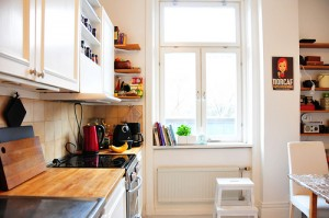 apts colorado: kitchen2